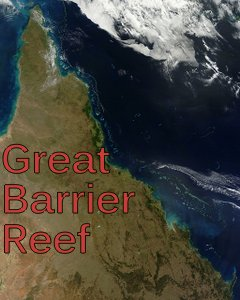 great-barrier-reef-vacations
