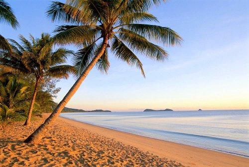 Palm Cove Area Resorts