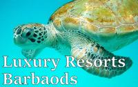 Luxury Resorts Barbados