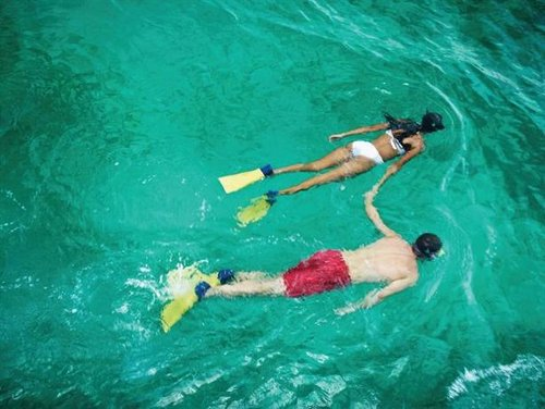 Snorkeling at Couples Negril Jamaica