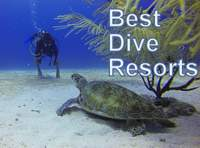 Dive Resorts