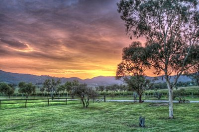Pokolbin sunset HDR 2 Shishberg FLICKR CC