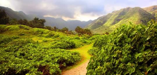 Molokai Hike
