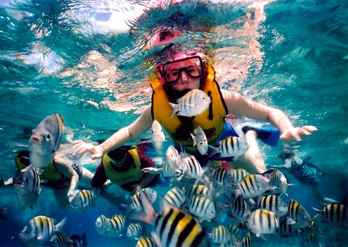 Snorkeling, Caribbean Family Resorts