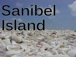 IMAGE: Sanibel Shells, Sanibel Island, Florida nikoretro