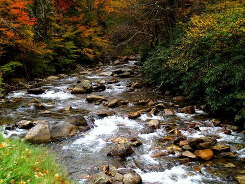 Smoky Mountains in Fall