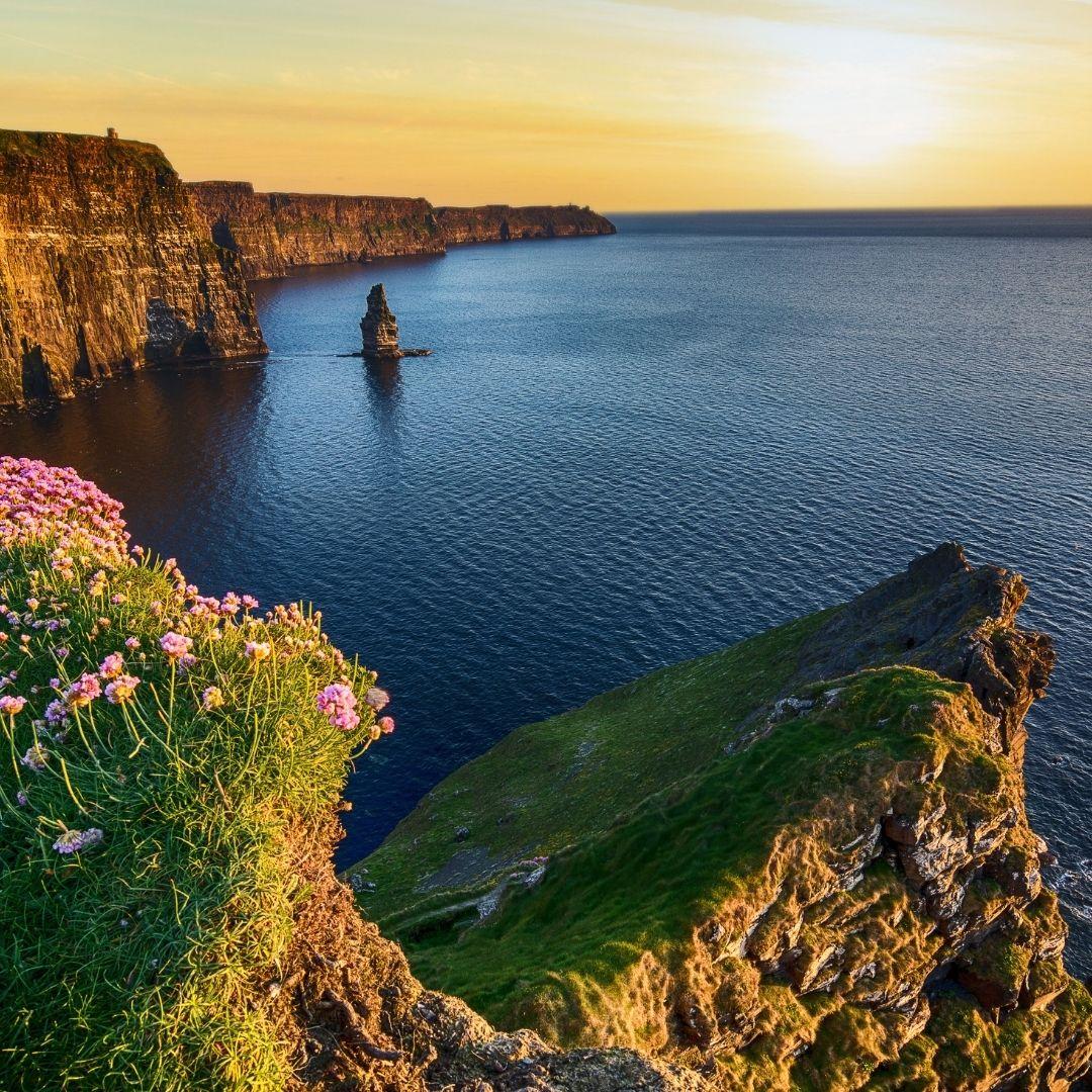 Ireland Life