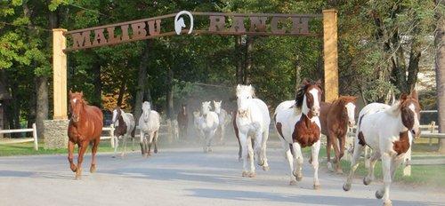 Malibu Dude Ranch, Poconos Luxury All Inclusive Ranch